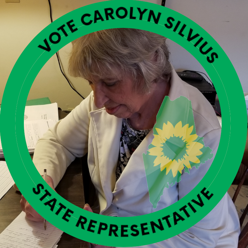 Carolyn Silvius, candidate for state representative, House District 42